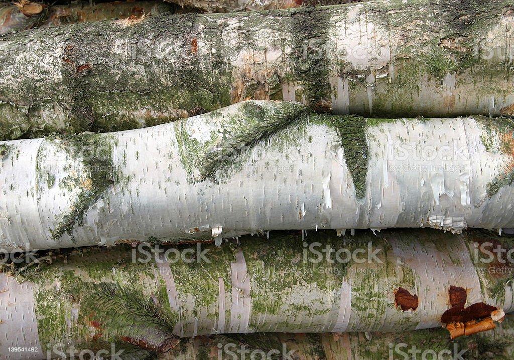 Birch Logs Background royalty-free stock photo