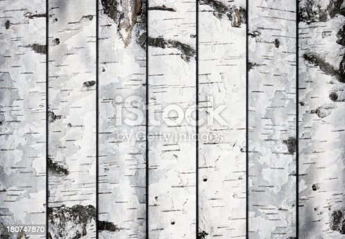 Birch planks background.