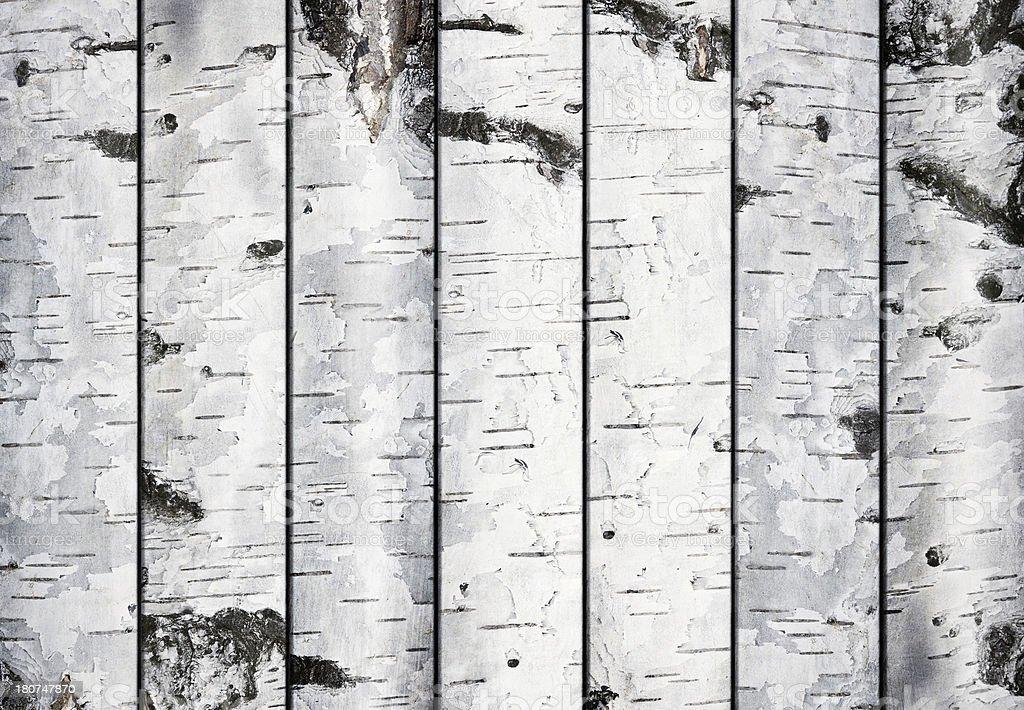 Birch Planken – Foto