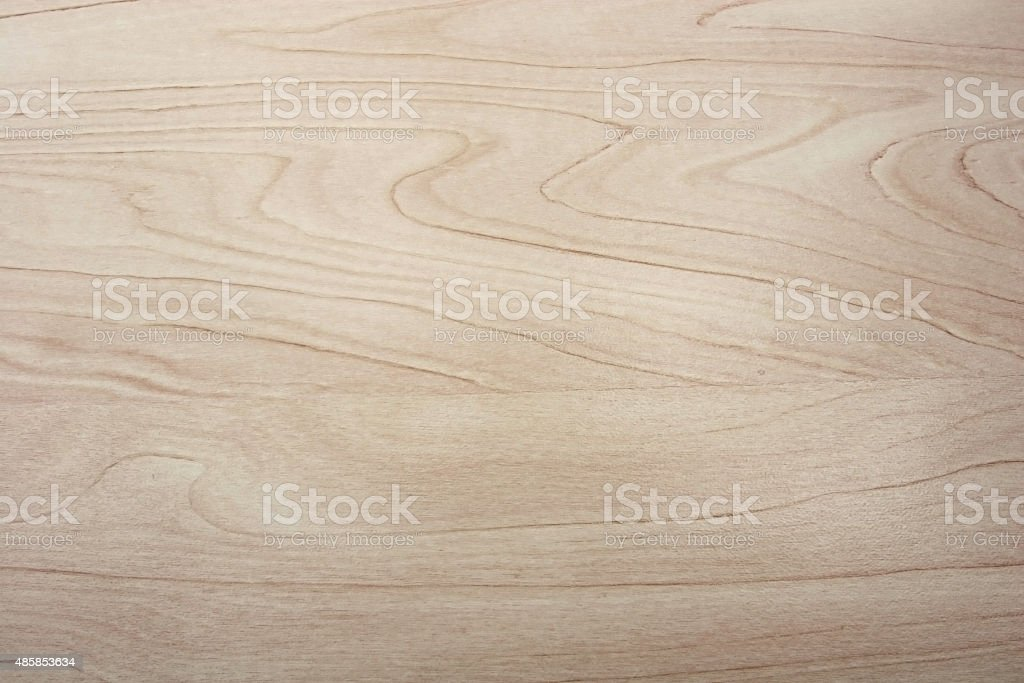 Birch wood texture stock photo