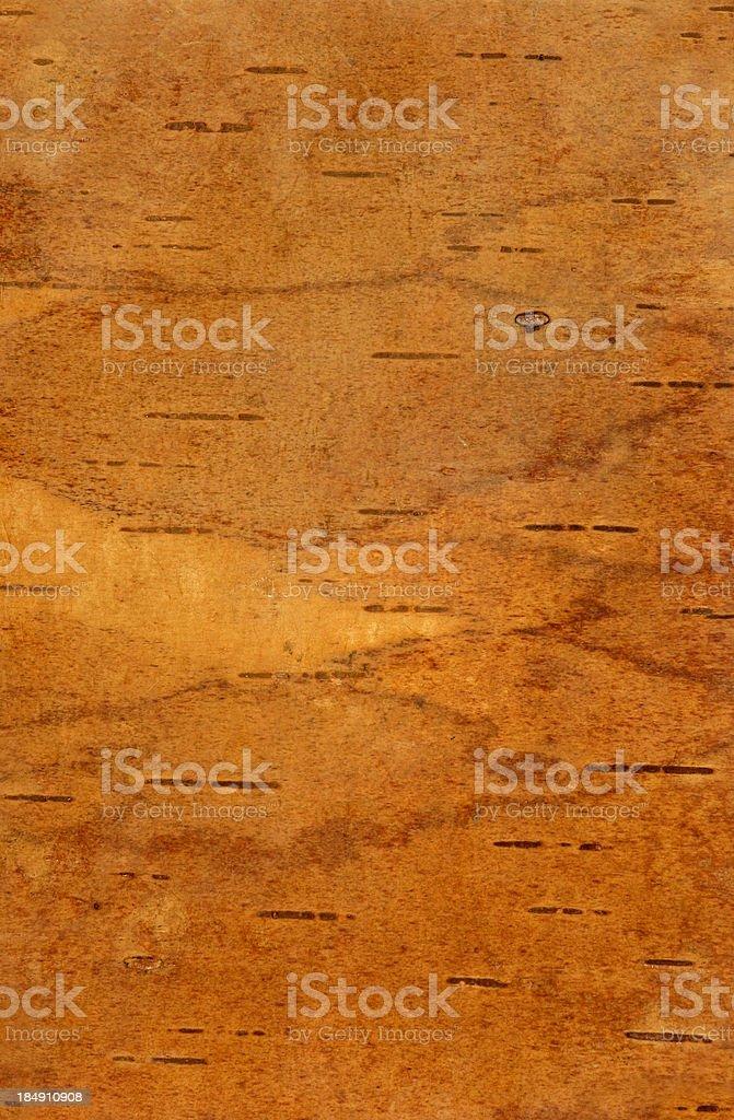 Birch-bark texture royalty-free stock photo