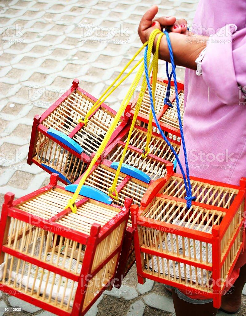 Bird boxes royalty-free stock photo