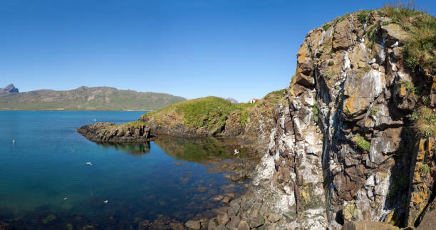 Bird breeding rock in Borgarfjordur fjord Panoramic view on a bird breeding rock in Borgarfjordur fjord near Bakkagerdi town, a tourism destination in the East fjords region, on a sunny day in summer auk stock pictures, royalty-free photos & images