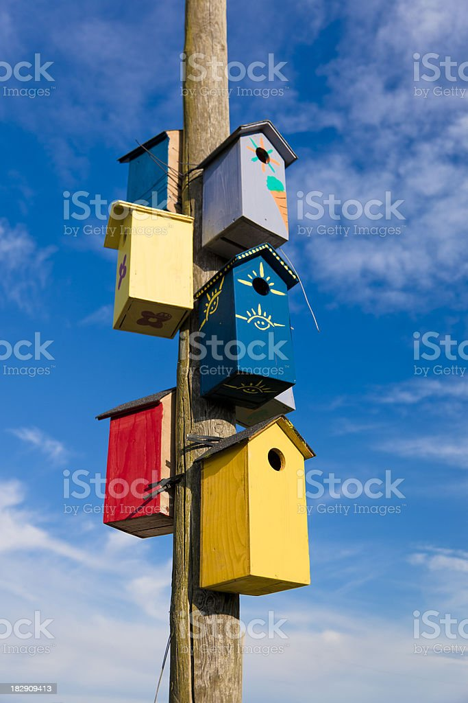 Bird cage on a wooden pole royalty-free stock photo