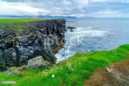 istock Bird cliffs at the seaside near Arnarstapi Village 578089862