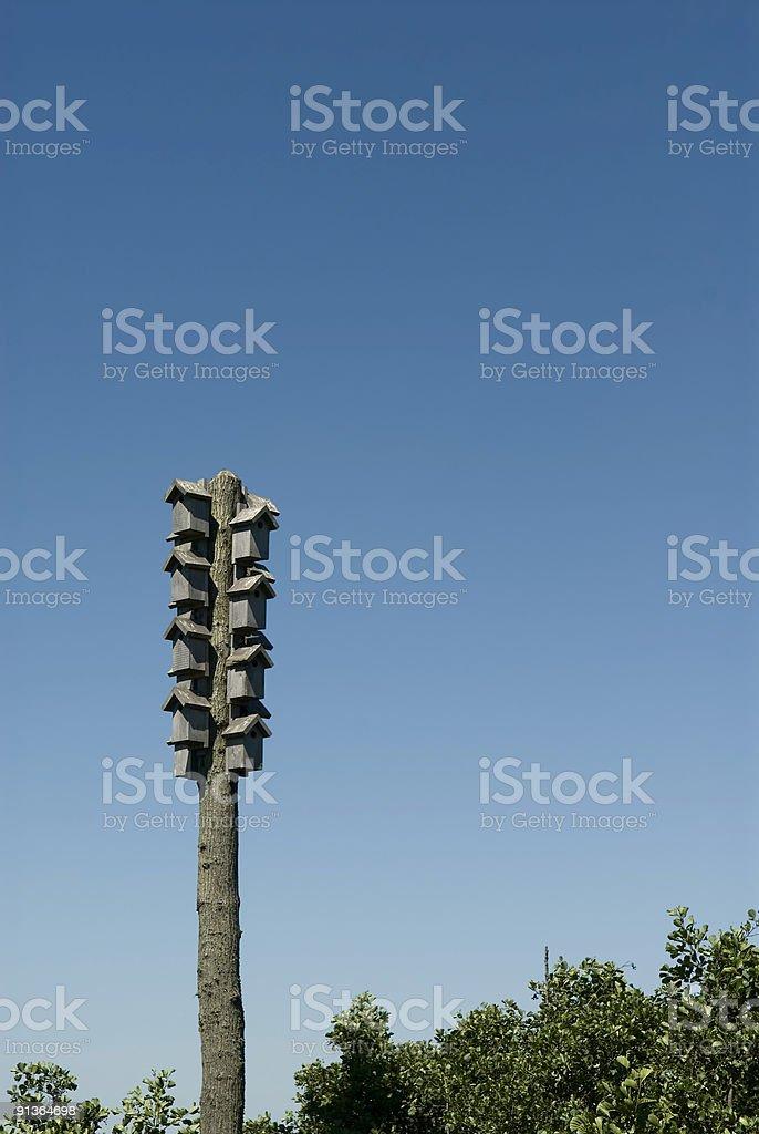 Bird condo stock photo