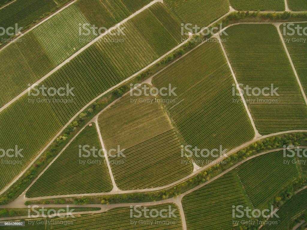 vue des champs agricoles verdoyants, europe - Photo de Agriculture libre de droits