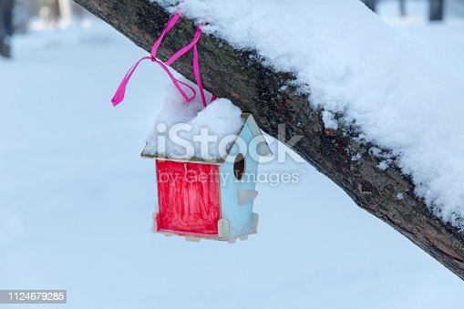 multicolored birdhouse on a tree branch in a winter park