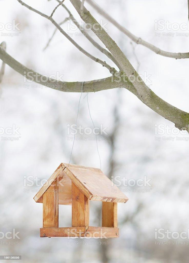 Bird feeder in winter park royalty-free stock photo