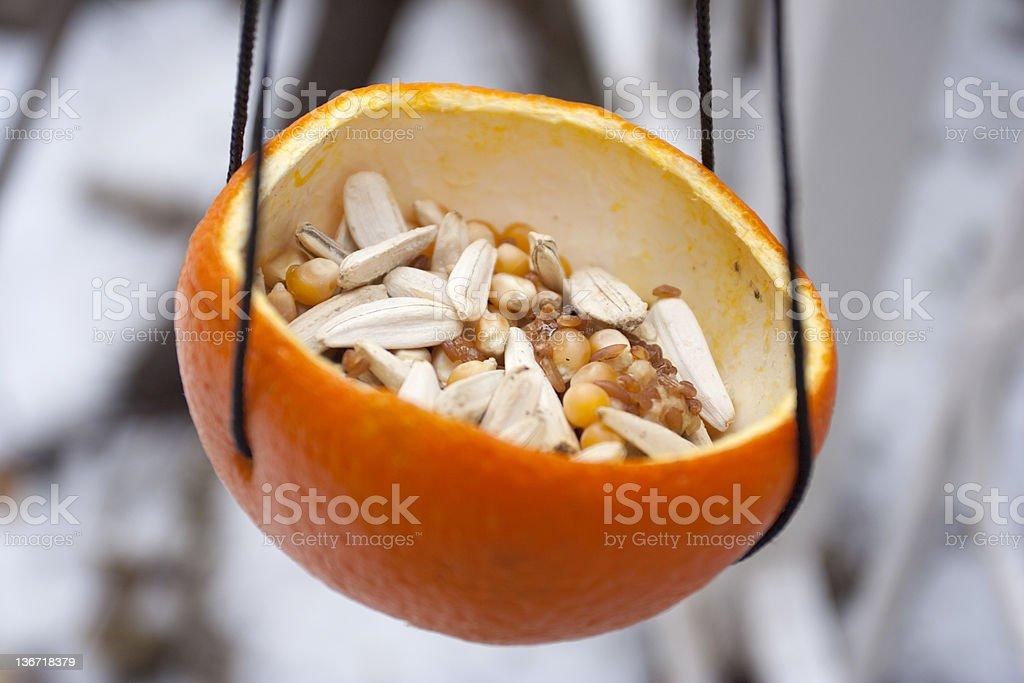 bird feeder made by orange peel stock photo
