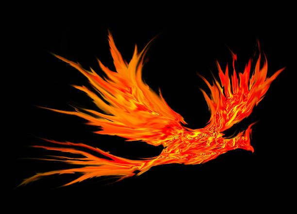 Pájaro fuego abstracto - foto de stock