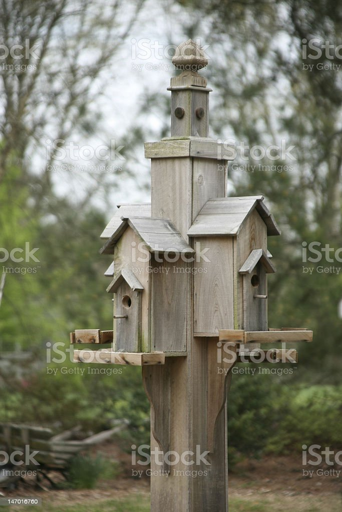 Bird Hotel royalty-free stock photo