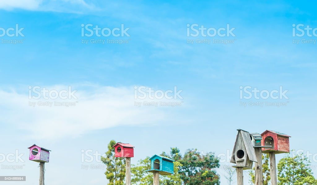 Bird house background with copy space of blue sky. stock photo