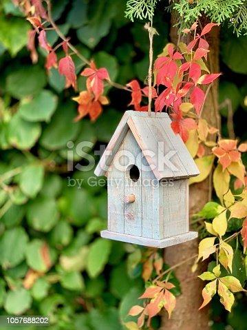 Bird house in the autumn garden