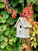 Bird house in the autumn garden