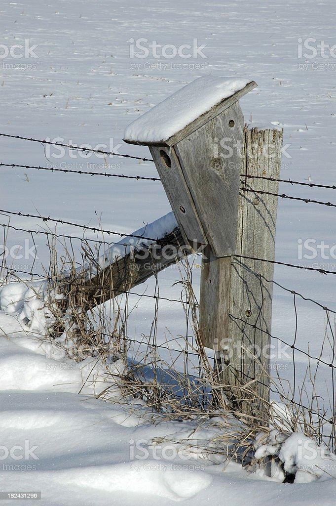 Bird House in the Frigid Winter stock photo