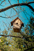 Bird house made of wood in view