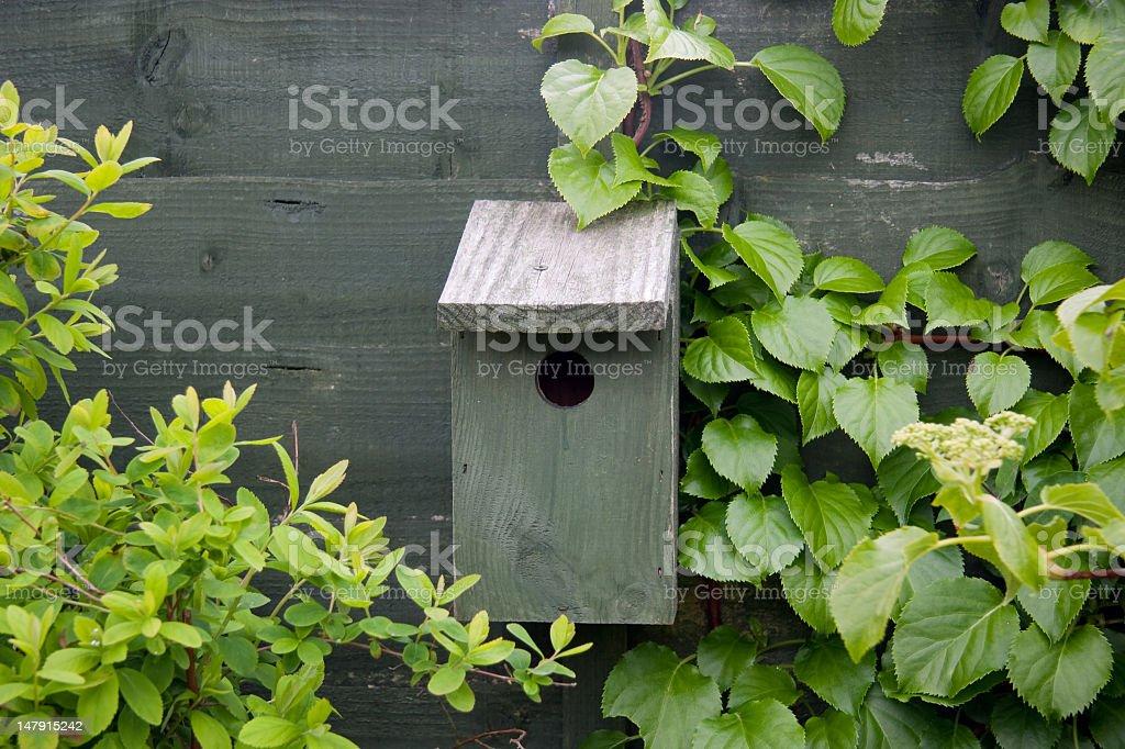 Bird house on fence amongst the greenery royalty-free stock photo