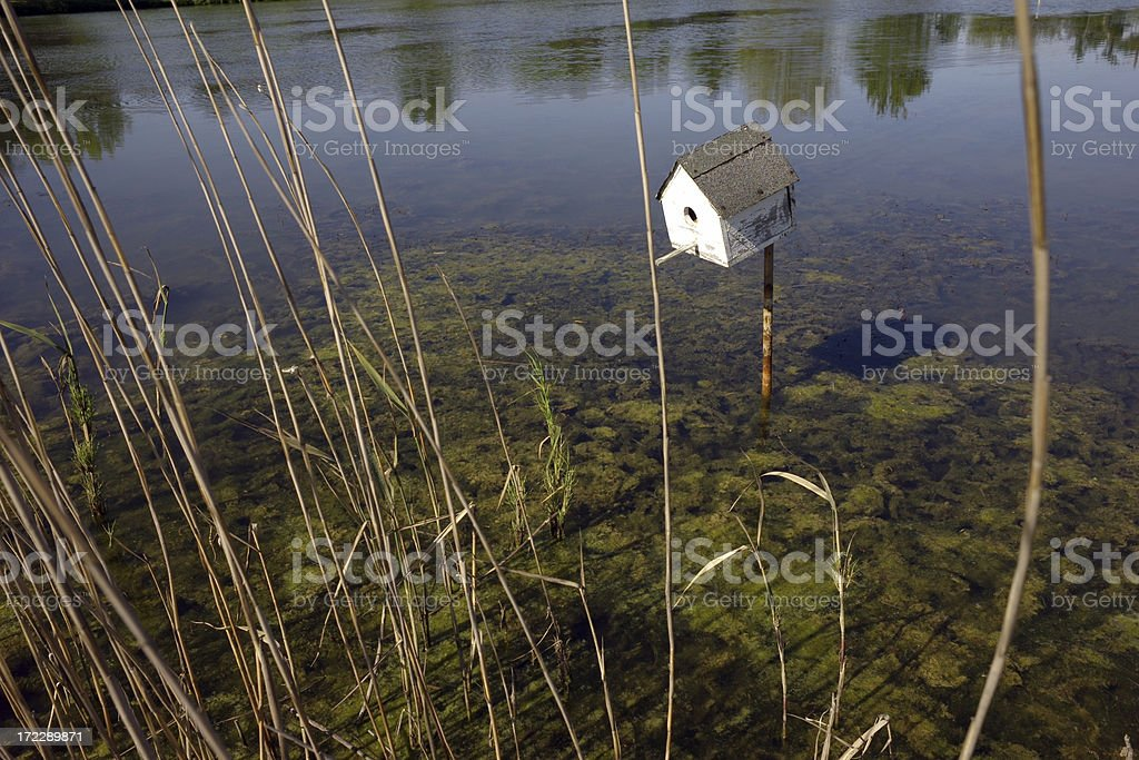 Bird house on the pond royalty-free stock photo