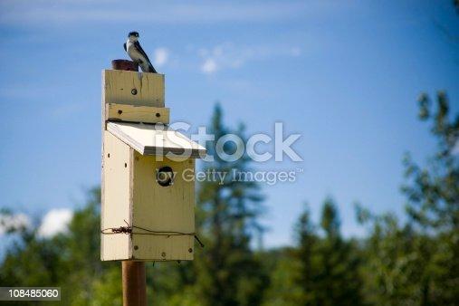 139975532 istock photo Bird house 108485060