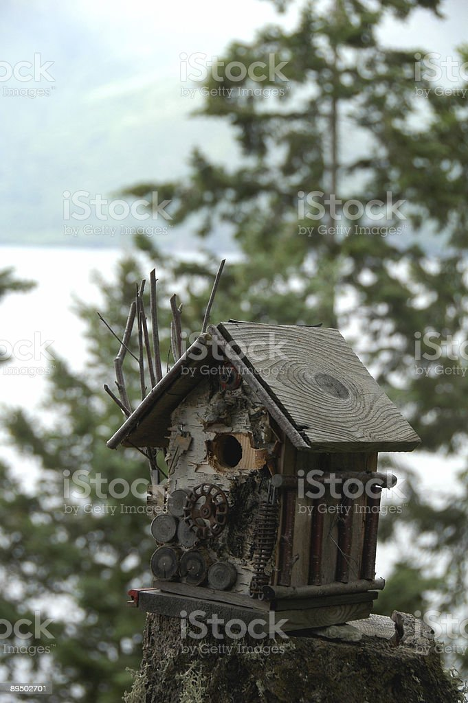 bird house royalty-free stock photo