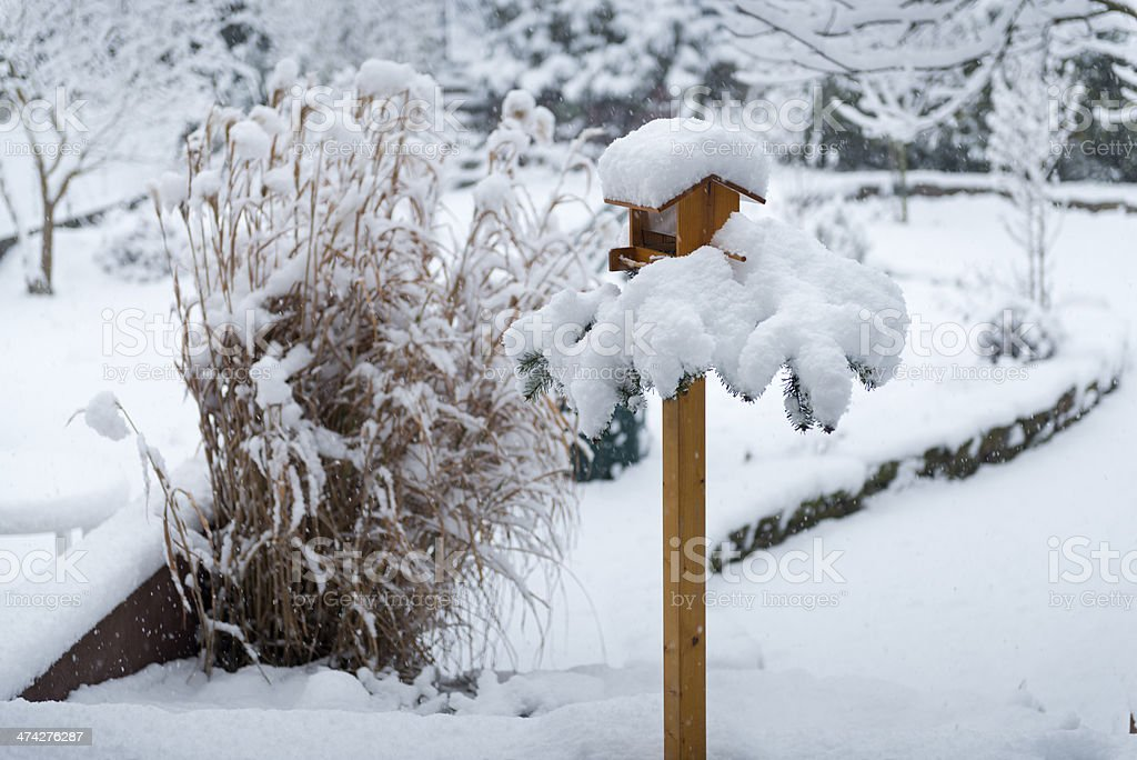 Bird house with fir branch and snow stock photo