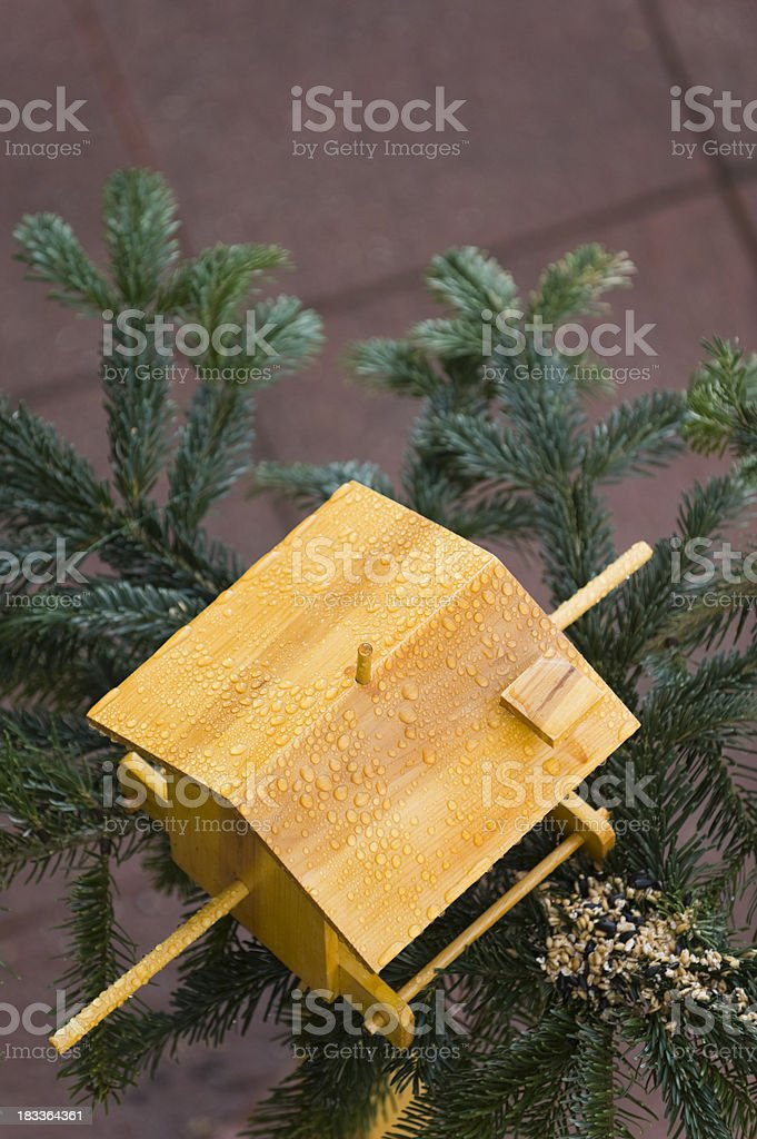 Bird house with fir branch stock photo