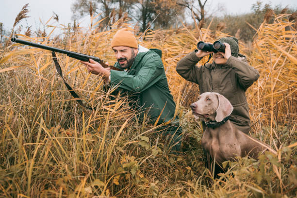 bird hunting Father and son sitting in a bushes and hunting down an animal hunter stock pictures, royalty-free photos & images