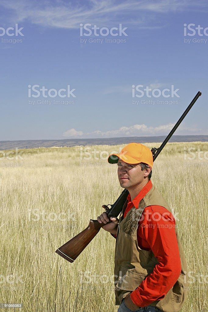Bird Hunting Series royalty-free stock photo