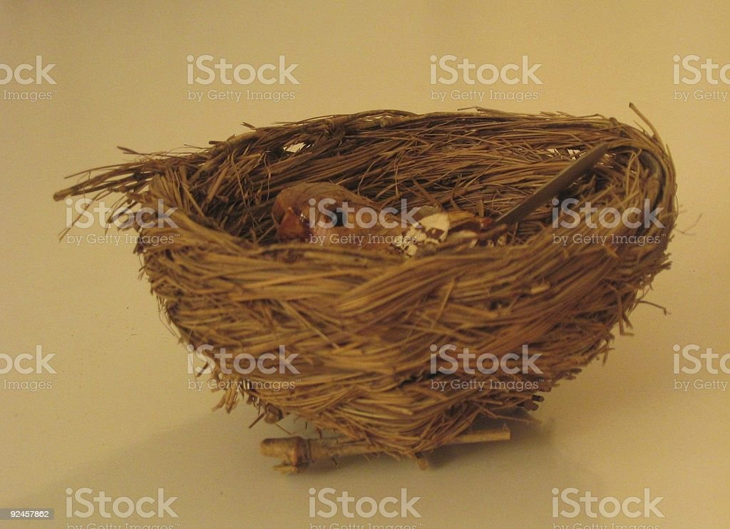 Bird in nest royalty-free stock photo