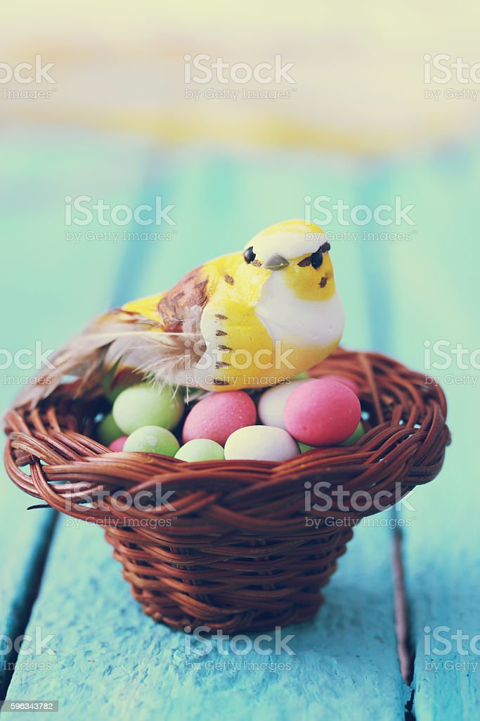 bird in the nest royalty-free stock photo