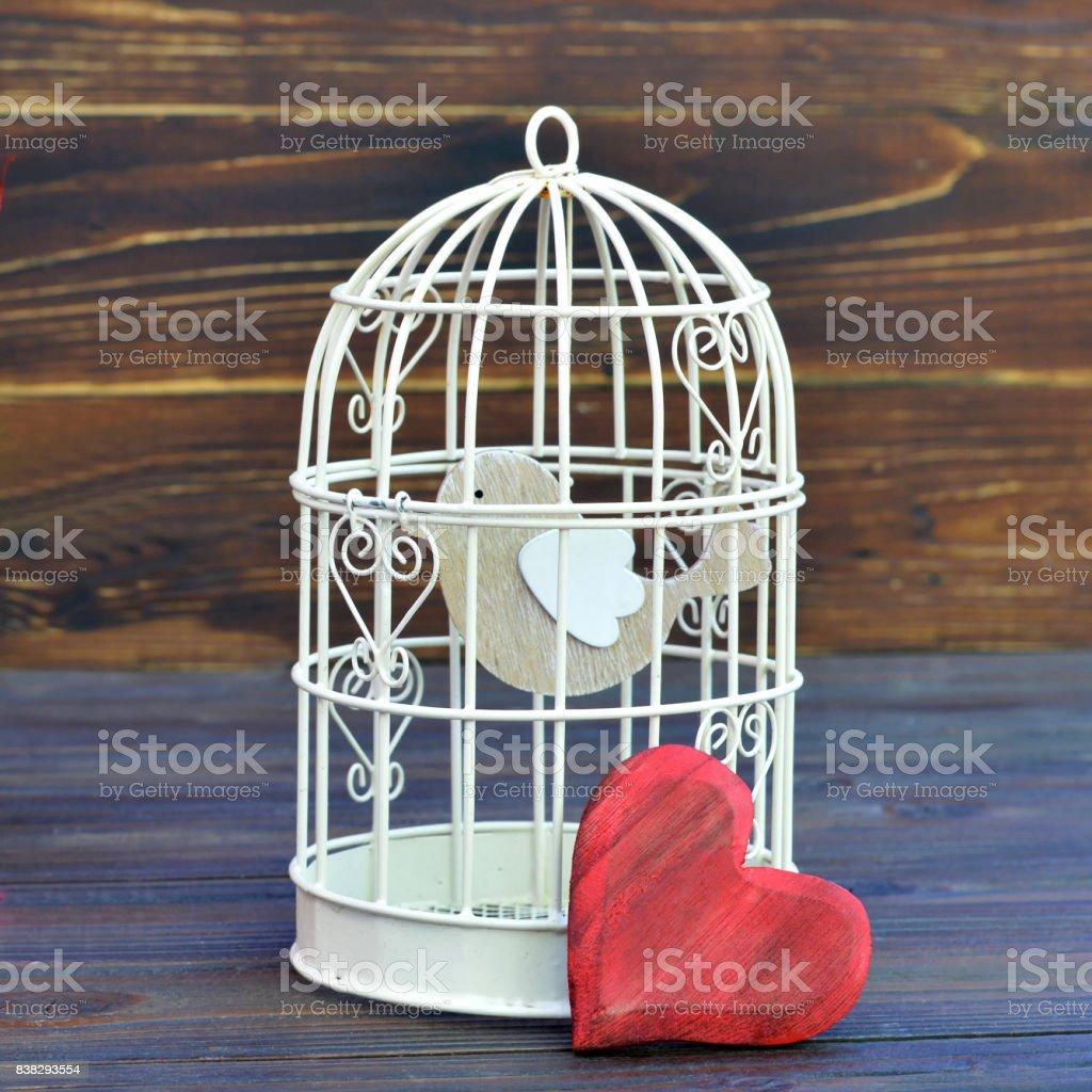 Bird inside bird cage stock photo
