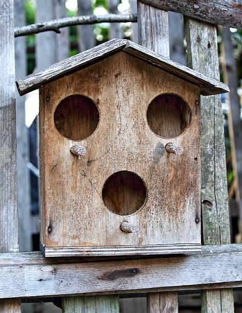 Bird nest wooden house stock photo