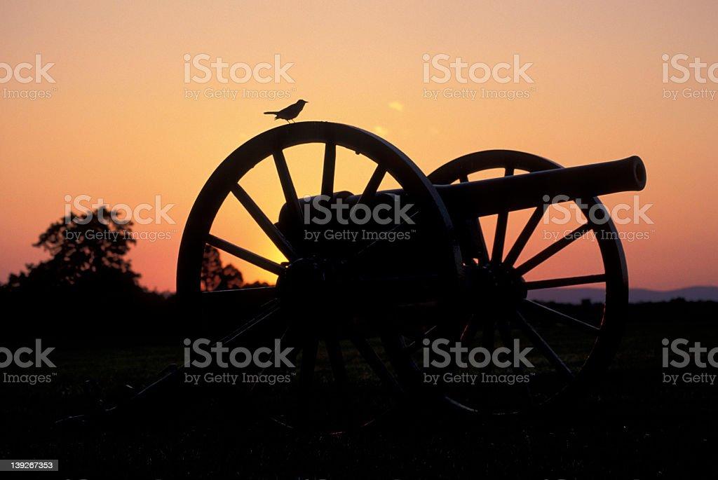 Bird on Civil War cannon stock photo