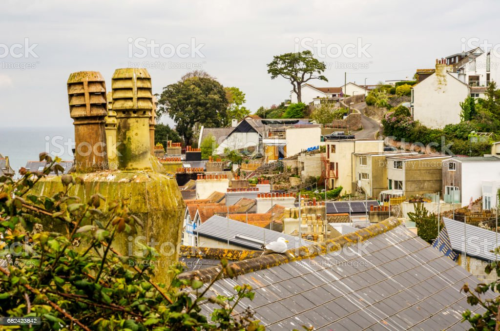 Bird on the chimney and roofs of buildings covered with green moss, seaside spot seen from the bird's eye view royalty-free stock photo