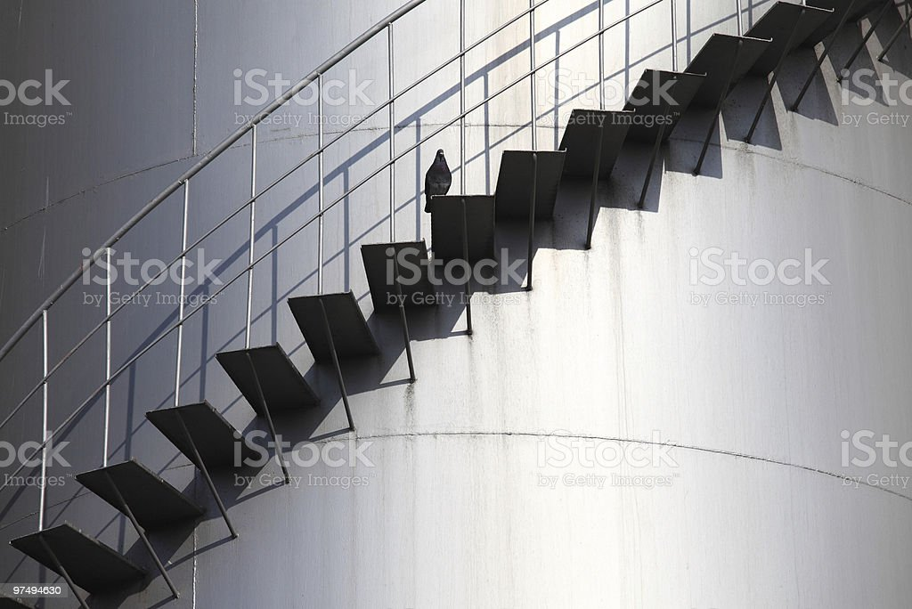 Bird on the stairs. royalty-free stock photo