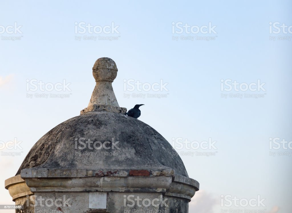Bird on the top of colonial turret stock photo
