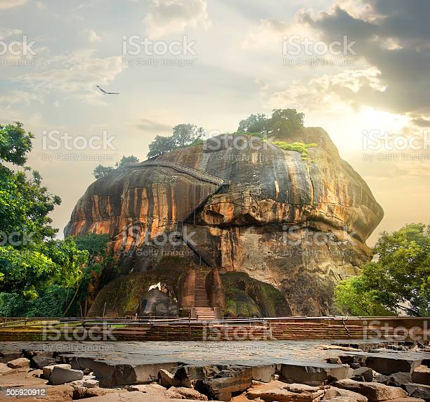 Photo of Bird over Sigiriya
