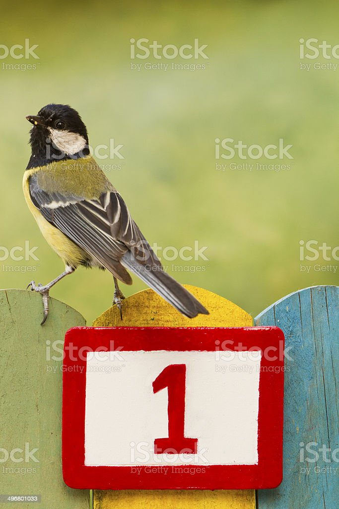 Bird perched on a fence with the number one painted royalty-free stock photo