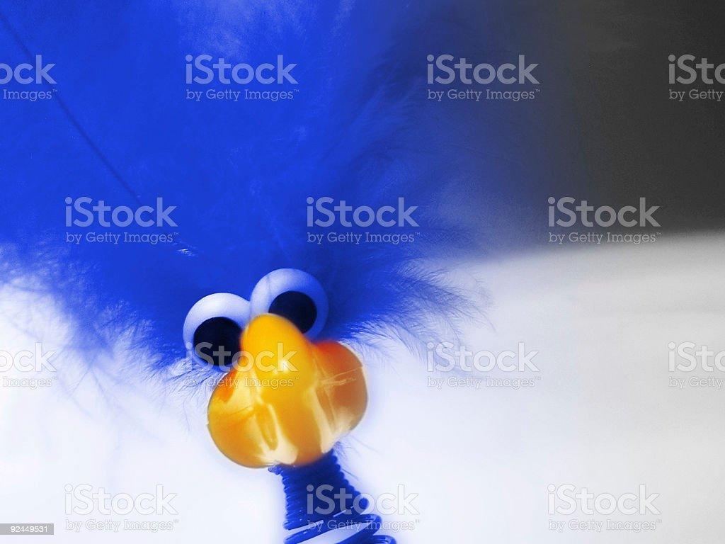 Bird! royalty-free stock photo