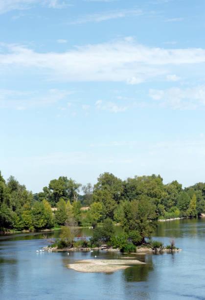 Réserve d'oiseaux dans la rive de la Loire - Photo