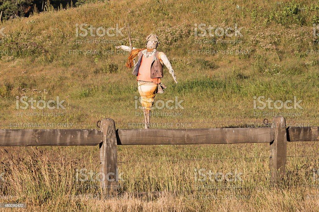 bird scarer on the meadow stock photo