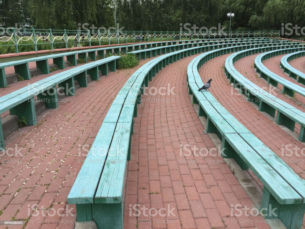 Bird sits on bench royalty-free stock photo
