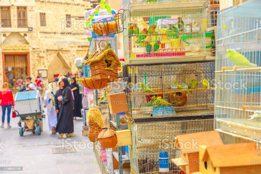 Bird Souq Doha Stock Photo - Download Image Now - iStock