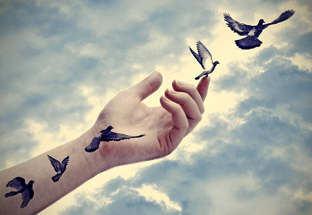 Bird tattoos come to life, freedom concept stock photo
