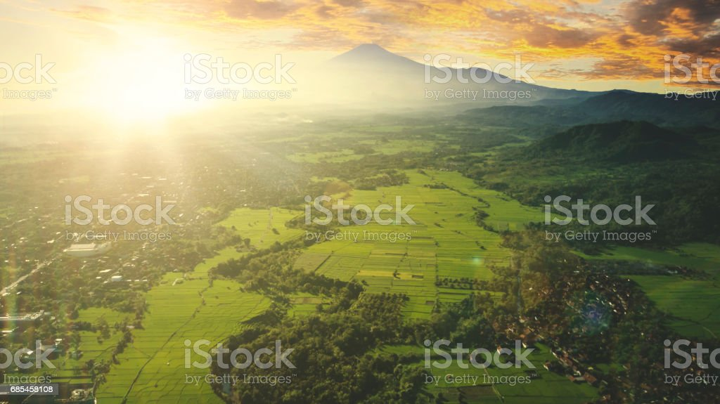 Bird view of farmland in the morning foto de stock royalty-free