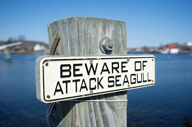 Bird Warning sign stock photo