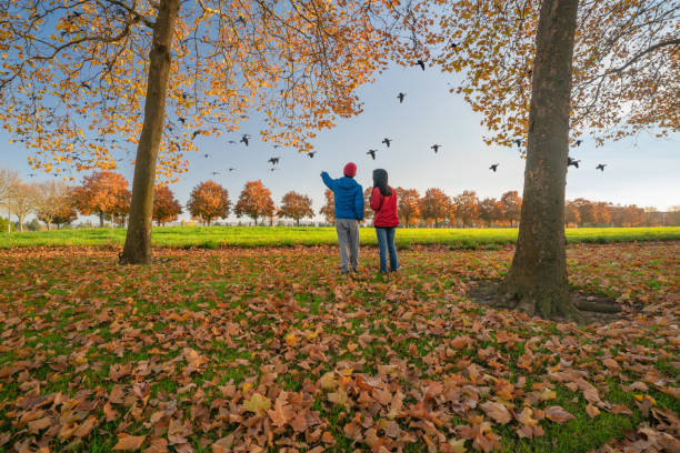 Bird watching people surrounded by autumn colors stock photo