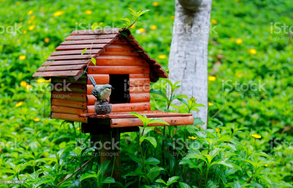 bird wooden house in the small garden stock photo