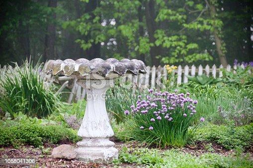 Birdbath, Flowers and Old Fence
